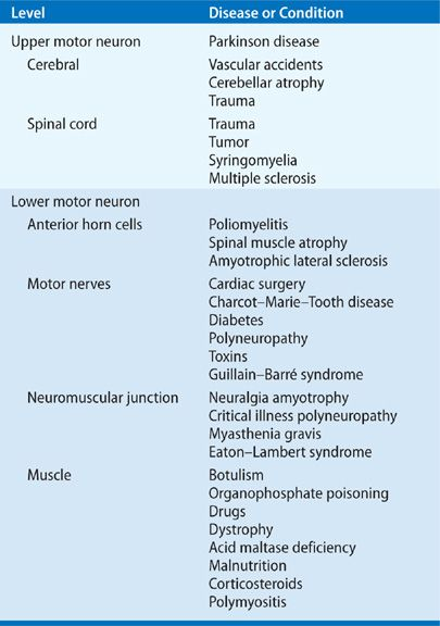 Effects of Neuromuscular Diseases on Ventilation | Thoracic Key